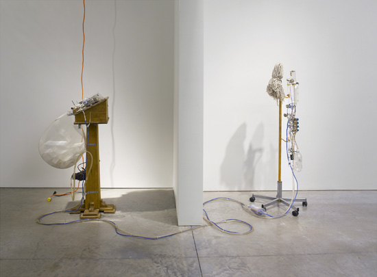 Tim Hawkinson Sculpture