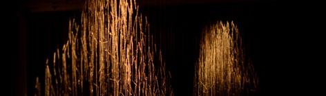 Catie Newell Sculpture